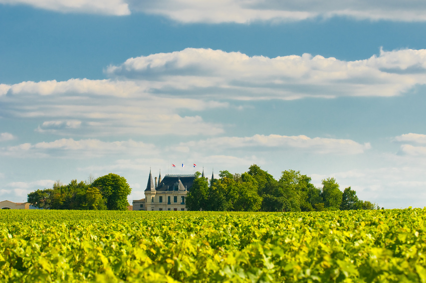 Chateau and vineyard in Margaux, Bordeaux, France